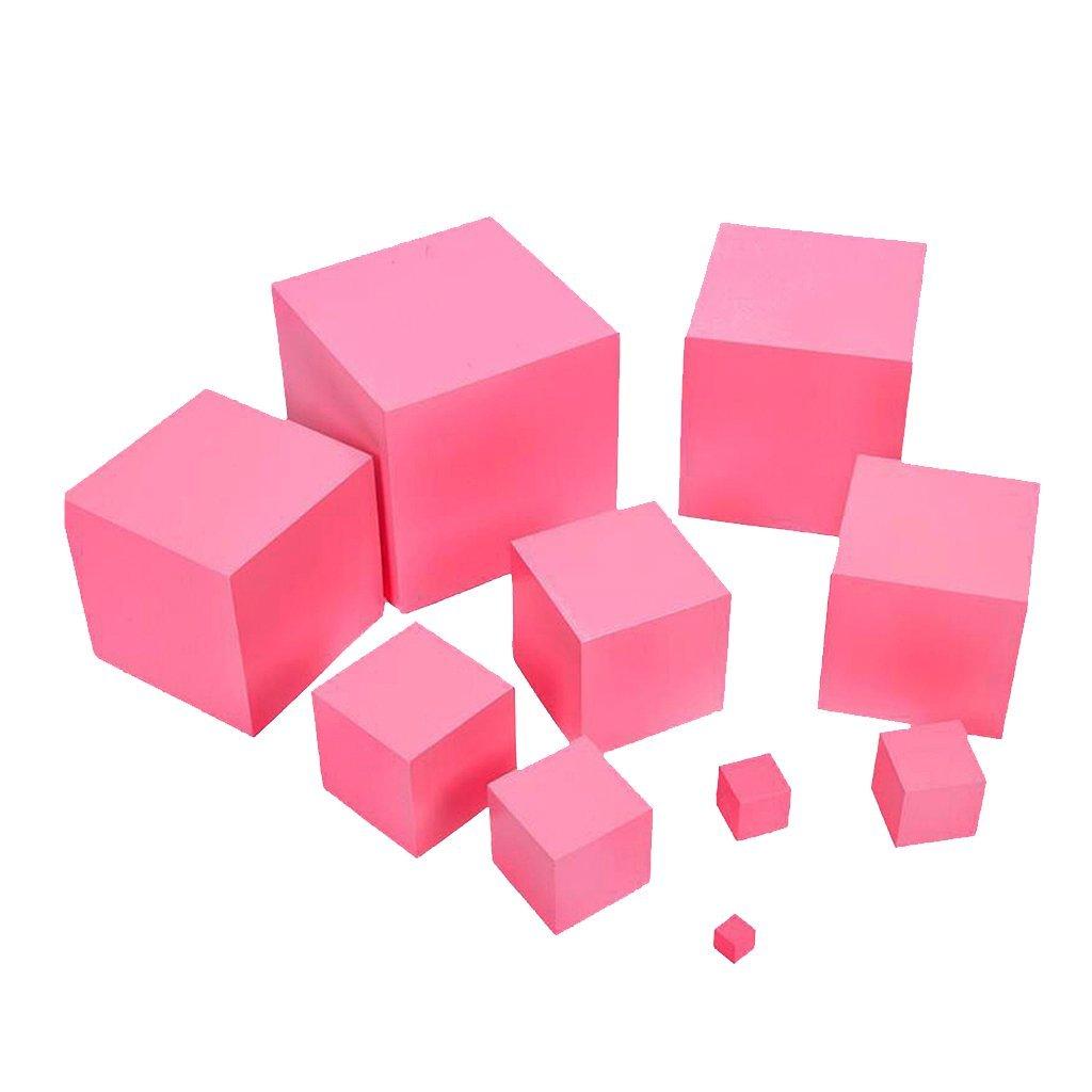 torre rosa montessori